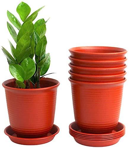 6 unidades de Macetas de Plastico rojas economicas para trabajos de jardineria y huerto exterior