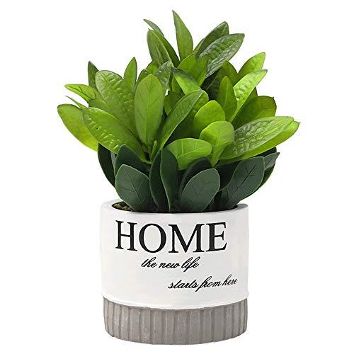 TURMIN Mini Plantas de Plástico Artificiales con Maceta de Cemento Pequeñas Flores Decorativas...