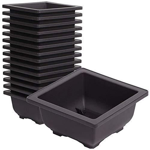 Juego de 15 macetas de plastico cuadradas baratas color negro para bonsái de entrenamiento