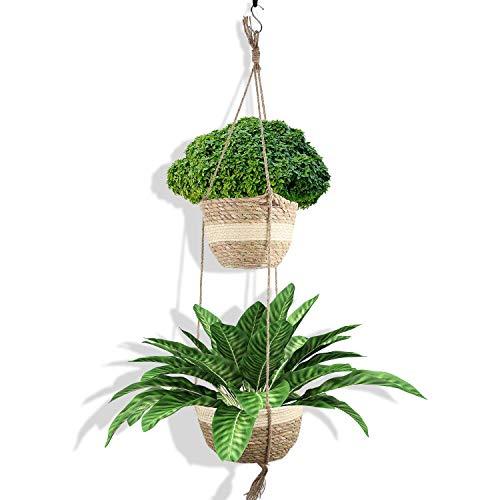 Set de cestas colgantes para plantas aptos tanto para interior como exterior