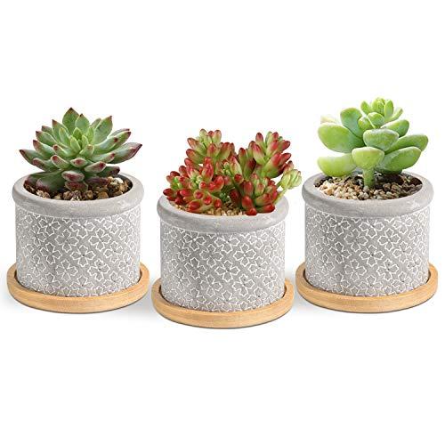 T4u 6CM Macetas para Cactus de Cemento con Plato de Bambú Paquete de 3, Mini Maceteros Pequeños...