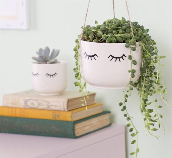 Planta de interior colgante en maceta para colgar con ojos